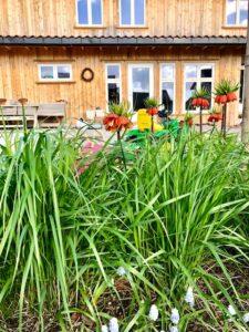 TNT Landskap. Foto: Plassen Vår