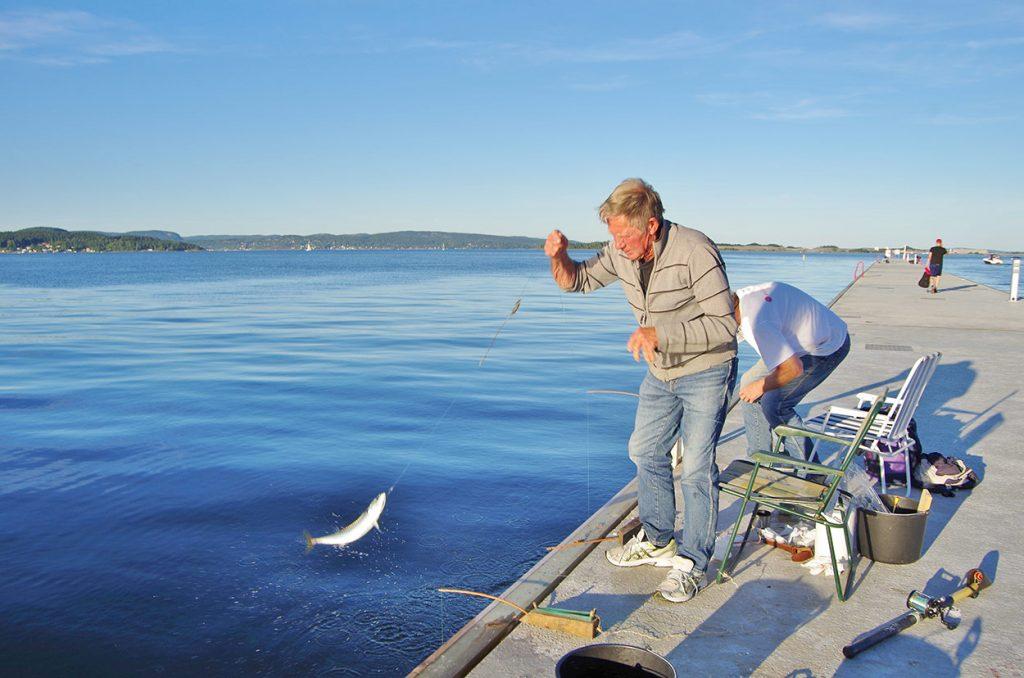 Fisker på bølgebryteren i Holmestrand. Foto.