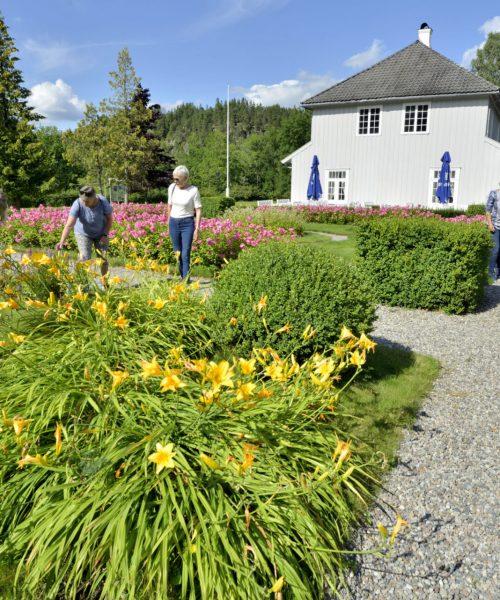 Bilde fra hagen til hovedgården i Eidsfoss. Foto.